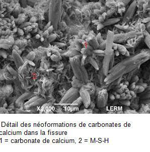 carbonates-de-calcium